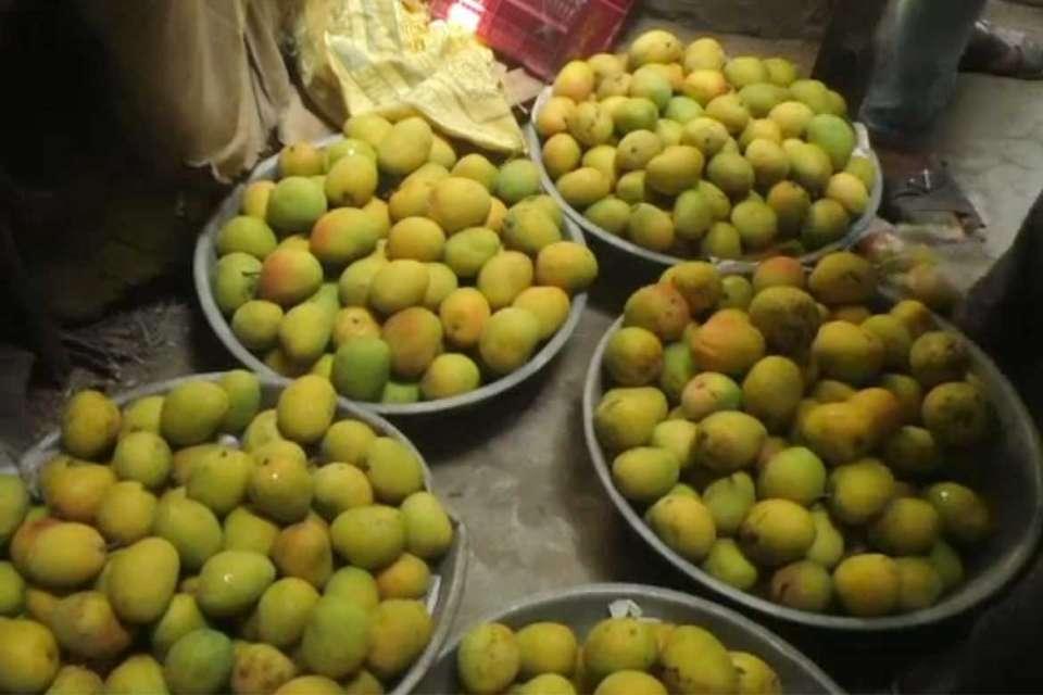 mango traders raid